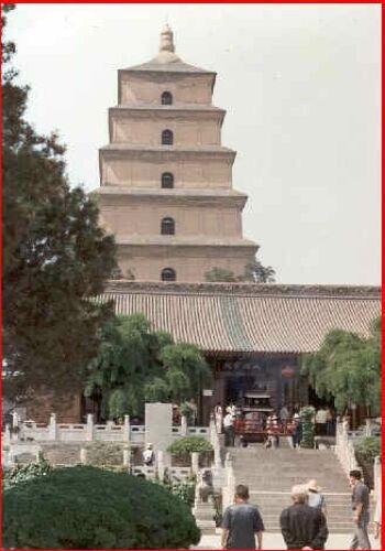 Pagoda velké divoké husy